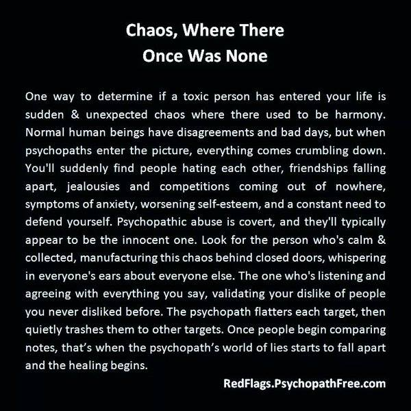 Chaos caused by narcissists